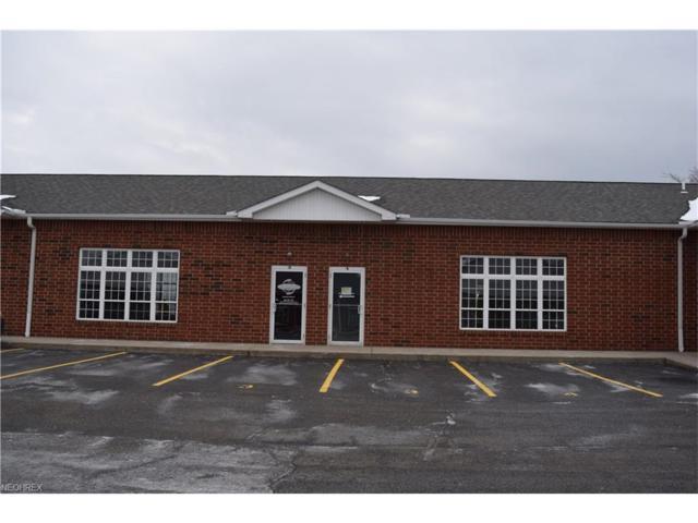 8299 Mayfield Rd #3, Chesterland, OH 44026 (MLS #3970281) :: PERNUS & DRENIK Team