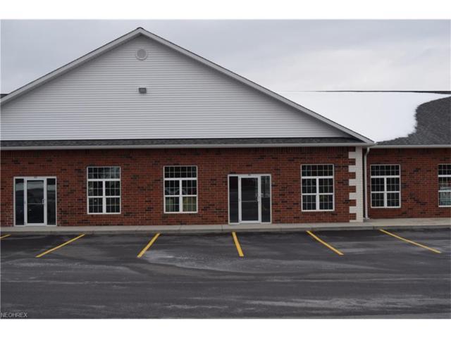 8279 Mayfield Rd #9, Chesterland, OH 44026 (MLS #3970287) :: PERNUS & DRENIK Team