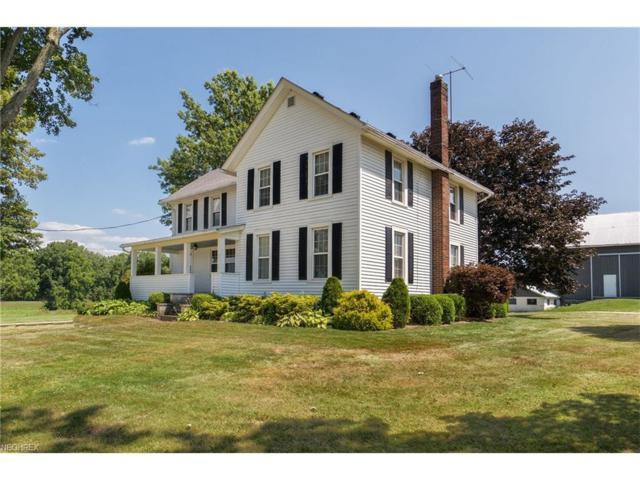 3631 Stony Hill Rd, Medina, OH 44256 (MLS #3970411) :: Tammy Grogan and Associates at Cutler Real Estate