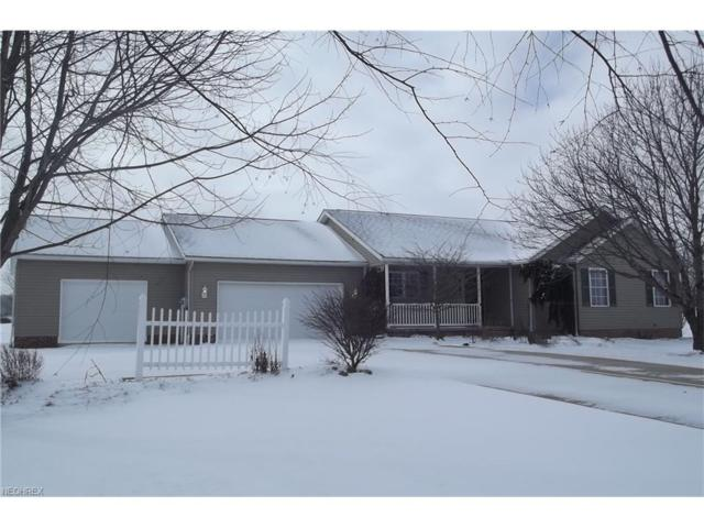 24135 Center Rd, Alliance, OH 44601 (MLS #3970606) :: Tammy Grogan and Associates at Cutler Real Estate