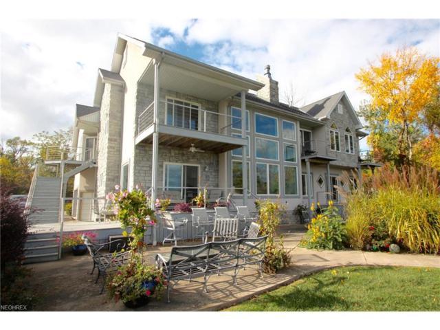204 Mcgettigan, Kelleys Island, OH 43438 (MLS #3970685) :: Tammy Grogan and Associates at Cutler Real Estate