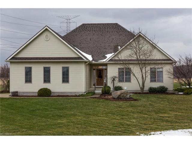 10815 Joppa Rd, Berlin Heights, OH 44814 (MLS #3970695) :: Tammy Grogan and Associates at Cutler Real Estate
