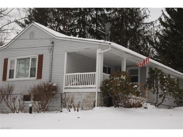 11650 Chestnutdale Rd, Chardon, OH 44024 (MLS #3970771) :: Tammy Grogan and Associates at Cutler Real Estate