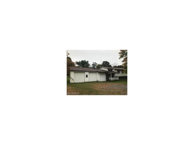 15556 Sr 45, Lisbon, OH 44432 (MLS #3971025) :: Tammy Grogan and Associates at Cutler Real Estate