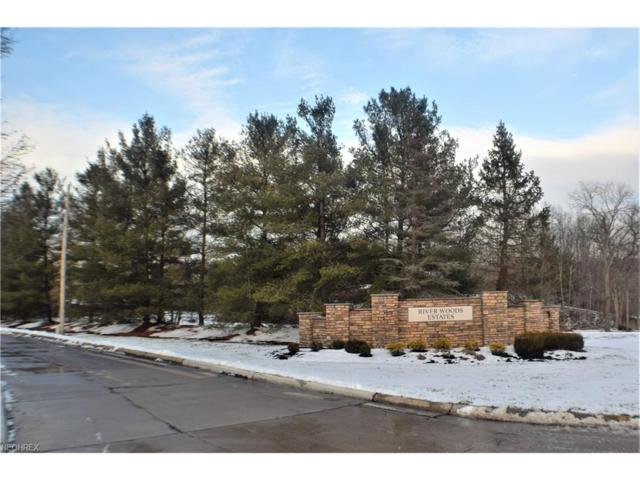 River Woods Dr, Hinckley, OH 44233 (MLS #3971150) :: Tammy Grogan and Associates at Cutler Real Estate