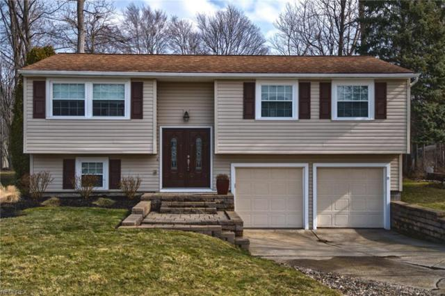 5777 Marine Pky, Mentor-on-the-Lake, OH 44060 (MLS #3971285) :: The Crockett Team, Howard Hanna