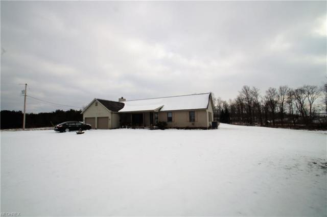 8964 Alberta Beach St NE, Louisville, OH 44641 (MLS #3971470) :: Tammy Grogan and Associates at Cutler Real Estate