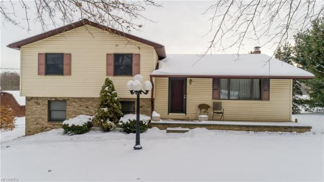 4278 Dudley Rd, Mantua, OH 44255 (MLS #3971745) :: Tammy Grogan and Associates at Cutler Real Estate