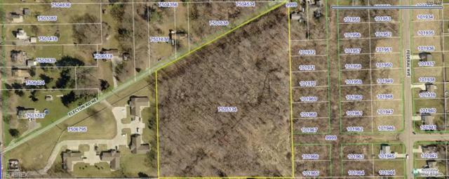 Electon Rd NE, Alliance, OH 44601 (MLS #3971799) :: Tammy Grogan and Associates at Cutler Real Estate