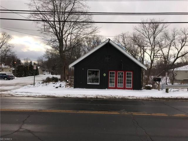 109 N Lake St, Madison, OH 44057 (MLS #3971877) :: Tammy Grogan and Associates at Cutler Real Estate