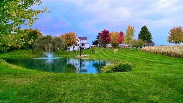 8896 Black Diamond Rd, Marshallville, OH 44645 (MLS #3972182) :: Tammy Grogan and Associates at Cutler Real Estate