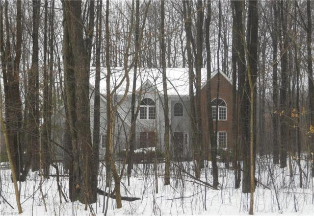 11995 Quail Woods Dr, Chardon, OH 44024 (MLS #3972377) :: The Crockett Team, Howard Hanna
