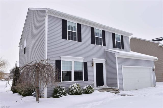 8791 Ashton Pl, North Ridgeville, OH 44039 (MLS #3972413) :: Tammy Grogan and Associates at Cutler Real Estate