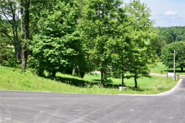 Corbin Drive, Zanesville, OH 43701 (MLS #3972482) :: The Crockett Team, Howard Hanna