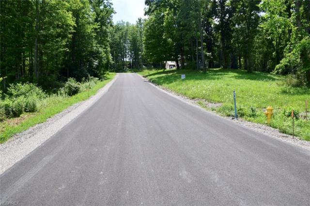 Corbin Drive, Zanesville, OH 43701 (MLS #3972485) :: The Crockett Team, Howard Hanna
