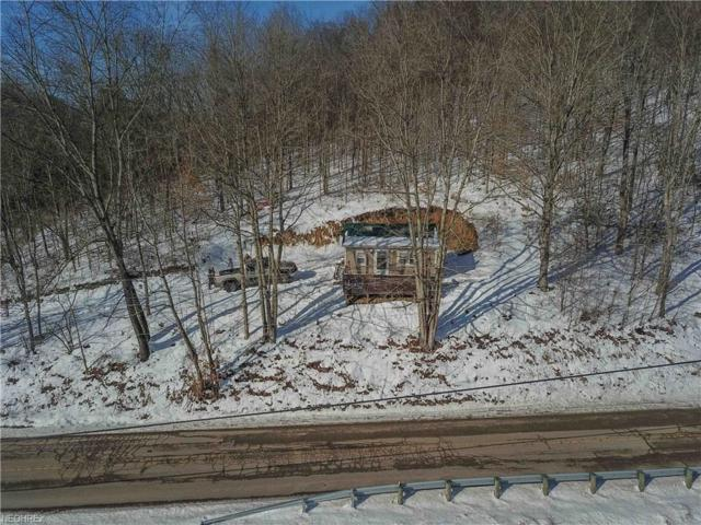 15433 Freedom Rd, Kimbolton, OH 43749 (MLS #3972541) :: Tammy Grogan and Associates at Cutler Real Estate