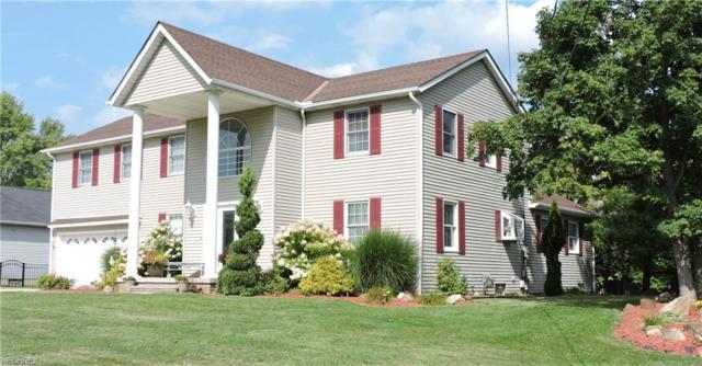 12433 Webster Rd, Strongsville, OH 44136 (MLS #3972620) :: Tammy Grogan and Associates at Cutler Real Estate