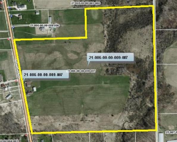 TBD Mumford Rd, Garrettsville, OH 44231 (MLS #3972685) :: Tammy Grogan and Associates at Cutler Real Estate