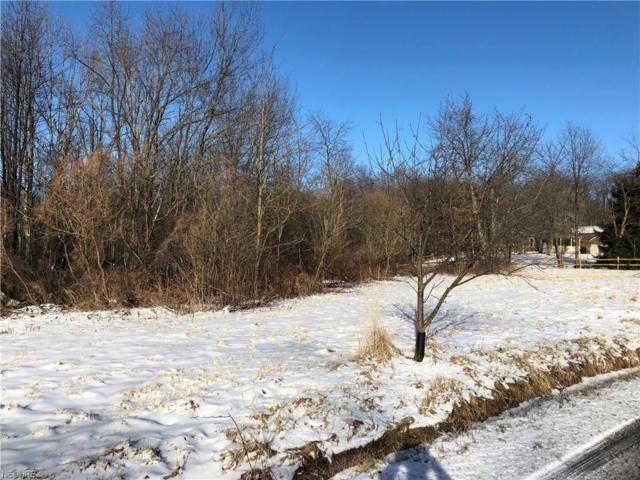 Alderlick Rd, Wellsville, OH 43968 (MLS #3972719) :: Tammy Grogan and Associates at Cutler Real Estate