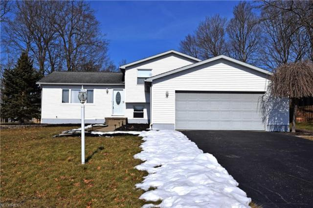 6932 Slippery Rock Dr, Canfield, OH 44406 (MLS #3972796) :: Tammy Grogan and Associates at Cutler Real Estate