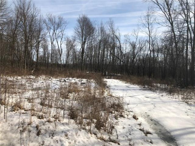 County Line V/L Rd, Newton Falls, OH 44444 (MLS #3972809) :: Tammy Grogan and Associates at Cutler Real Estate
