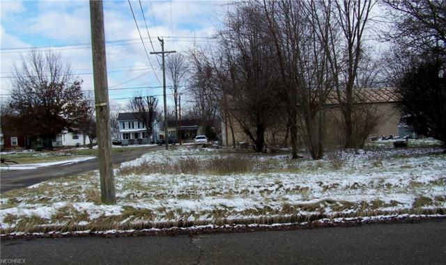 Martin Luther King Dr, Newcomerstown, OH 43832 (MLS #3972811) :: Tammy Grogan and Associates at Cutler Real Estate