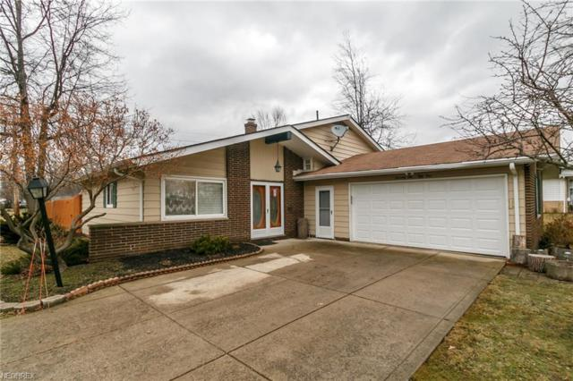 7651 Ohio St, Mentor, OH 44060 (MLS #3972816) :: The Crockett Team, Howard Hanna