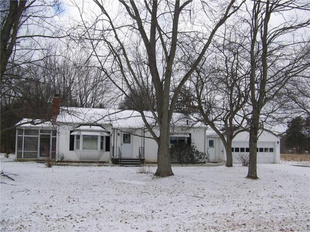 8944 Kane Rd, Wadsworth, OH 44281 (MLS #3972969) :: Tammy Grogan and Associates at Cutler Real Estate