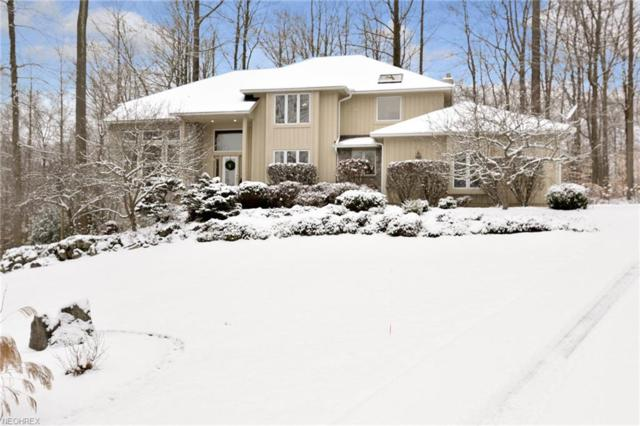 17410 Hawksview Ln, Chagrin Falls, OH 44023 (MLS #3972994) :: The Crockett Team, Howard Hanna