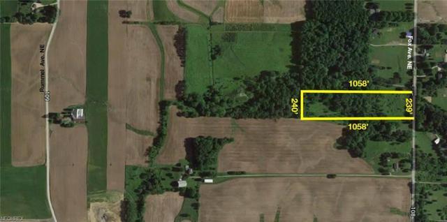 Fox Ave NE, Minerva, OH 44657 (MLS #3973050) :: Tammy Grogan and Associates at Cutler Real Estate