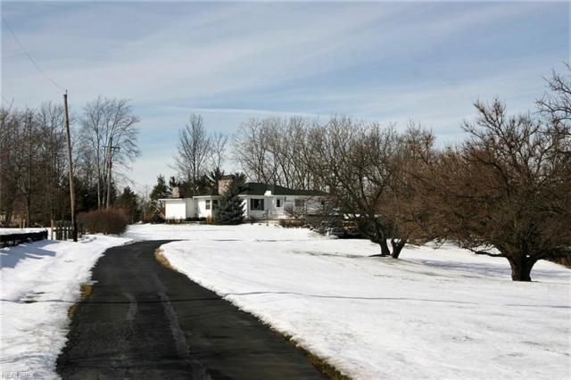 8422 Pearl Rd, Strongsville, OH 44136 (MLS #3973118) :: Tammy Grogan and Associates at Cutler Real Estate