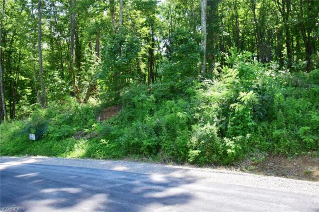 Corbin Drive, Zanesville, OH 43701 (MLS #3973126) :: The Crockett Team, Howard Hanna