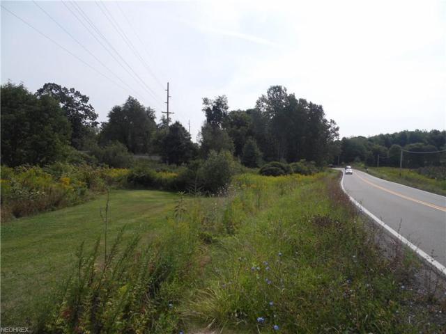Brady Lake Rd, Ravenna, OH 44266 (MLS #3973146) :: Tammy Grogan and Associates at Cutler Real Estate