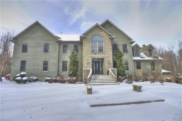 1621 Ridgewood Rd, Wadsworth, OH 44281 (MLS #3973190) :: Keller Williams Chervenic Realty