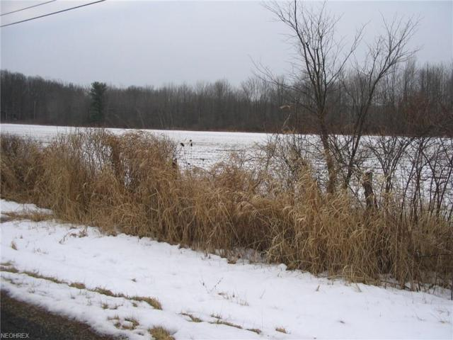 V/L 2 Fisher, Ravenna, OH 44266 (MLS #3973676) :: Tammy Grogan and Associates at Cutler Real Estate
