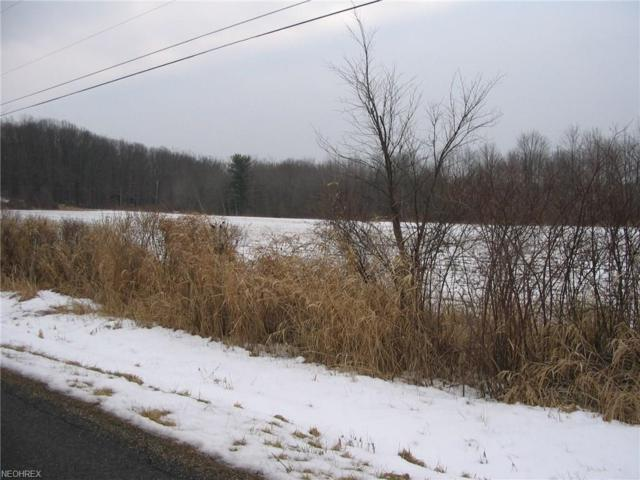 V/L 3 Fisher, Ravenna, OH 44266 (MLS #3973679) :: Tammy Grogan and Associates at Cutler Real Estate