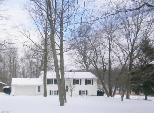 8734 Ranch Dr, Chesterland, OH 44026 (MLS #3973880) :: The Crockett Team, Howard Hanna