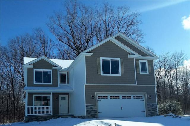 1200 Waterfront Pl, Painesville Township, OH 44077 (MLS #3973966) :: Keller Williams Chervenic Realty