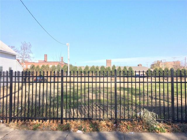 W 33rd St, Cleveland, OH 44109 (MLS #3974185) :: Keller Williams Chervenic Realty