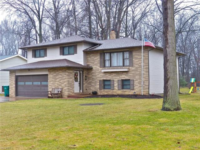 6430 Carter Blvd, Mentor, OH 44060 (MLS #3974654) :: The Crockett Team, Howard Hanna