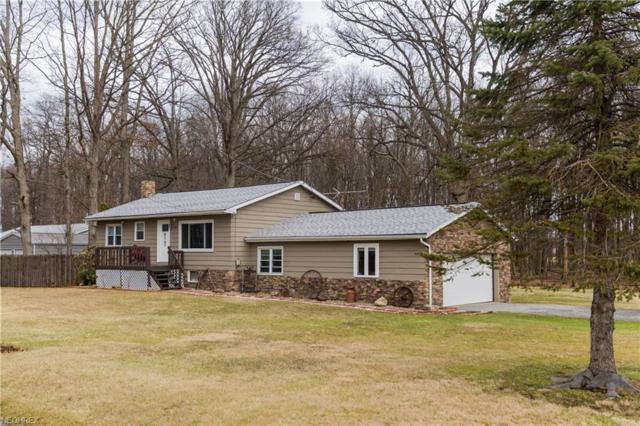 4842 Fredericksburg, Wooster, OH 44691 (MLS #3974739) :: Tammy Grogan and Associates at Cutler Real Estate