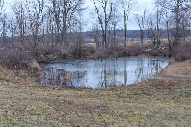 6045 Bluebell Rd, Cumberland, OH 43732 (MLS #3975162) :: RE/MAX Edge Realty