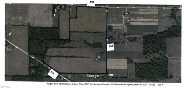 1034 B Township Road 251, Polk, OH 44866 (MLS #3975459) :: Keller Williams Chervenic Realty