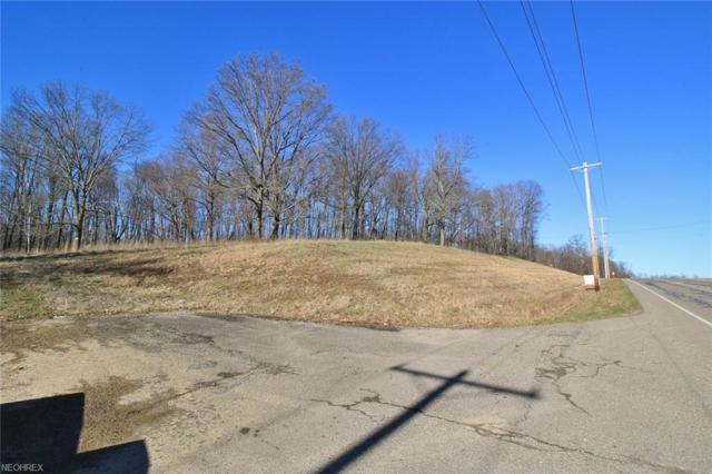 3050 Olde Falls Rd, Zanesville, OH 43701 (MLS #3975666) :: Keller Williams Chervenic Realty