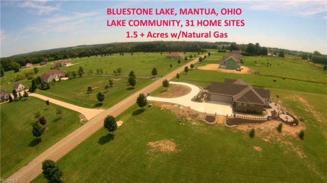 30-S/L Bluestone Lake Dr, Mantua, OH 44255 (MLS #3976274) :: Tammy Grogan and Associates at Cutler Real Estate