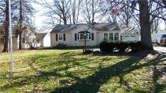 41375 Russia Rd, Elyria, OH 44035 (MLS #3976579) :: Tammy Grogan and Associates at Cutler Real Estate
