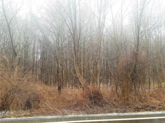 State Route 88 (Lot 35Se), Garrettsville, OH 44231 (MLS #3976680) :: Keller Williams Chervenic Realty