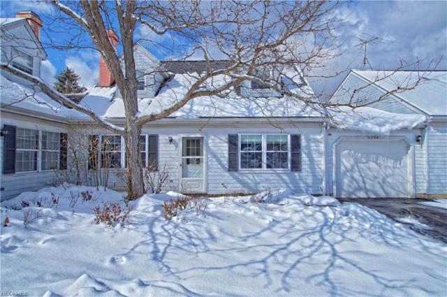 8754 Eastbrook Cir, Bainbridge, OH 44023 (MLS #3978881) :: Keller Williams Chervenic Realty