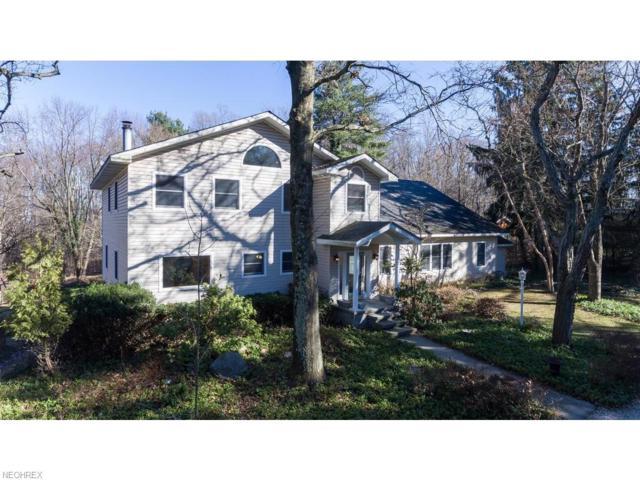 987 N Hametown Rd, Akron, OH 44333 (MLS #3979153) :: Keller Williams Chervenic Realty
