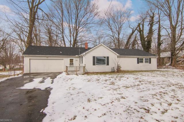 4769 State Route 82, Mantua, OH 44255 (MLS #3980404) :: Keller Williams Chervenic Realty